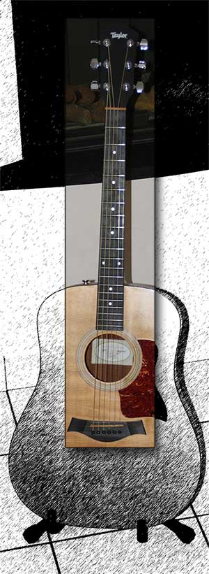 Guitar Taylor 110-GB